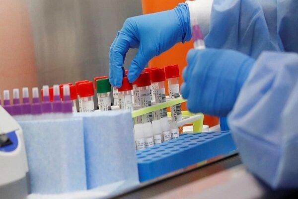 داروی سرطان برای درمان ویروس کرونا آزمایش می گردد